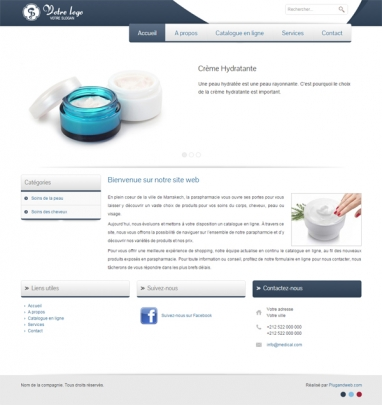 Site web professionnel  conception site web